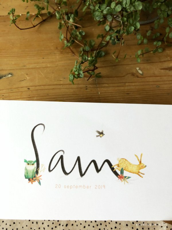 Geboortekaartje Sam! Konijntje en uil