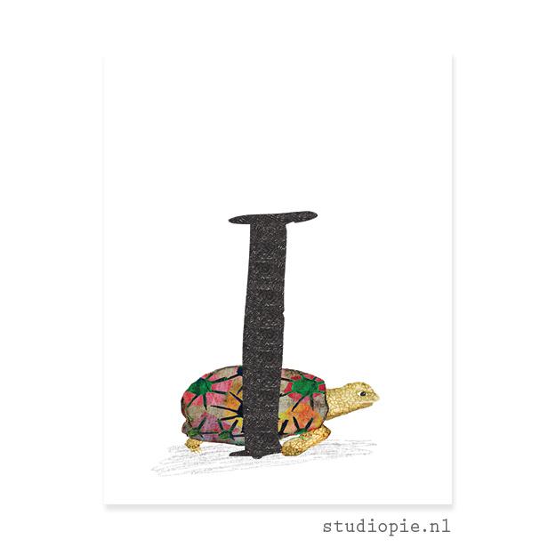 de i van INDISCHE STERSCHILDPAD | letterkaartje