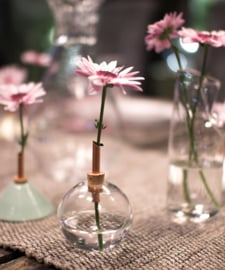 Scandinaviaform bloemenvaasje Glasilium 8,5 cm (doorzichtig)