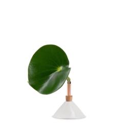 Scandinaviaform bloemenvaasje Consilium (wit) - 8,5 cm
