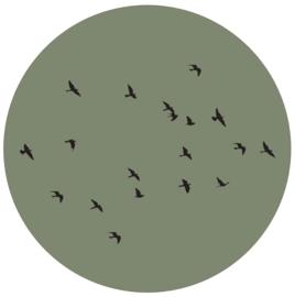 Label-R | Muurcirkel Birds (olijfgroen)