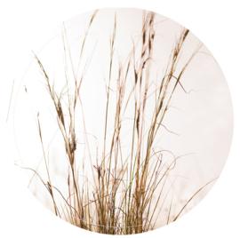 Label-R | Muurcirkel Gras