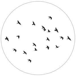 Label-R | Muurcirkel Birds (wit)