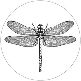 Label-R | Muurcirkel Libelle