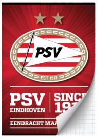 PSV schrift A4 geruit rood