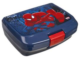 Spiderman lunchbox