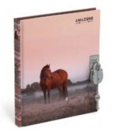 Amazone dagboek met slot (6400)