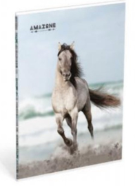 """Amazone schrift A4 gelinieerd """"zee"""" (6486)"""