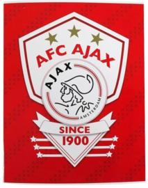 AFC Ajax A4 schrift geruit (1291)