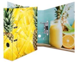 Ananas ordner