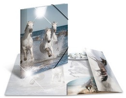 Elastomap A4 glossy paarden (3290)