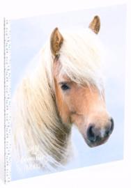 My favourite friends paard A4 schrift gelinieerd stip (3396)