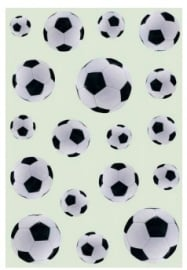 Voetbal stickers (5012)