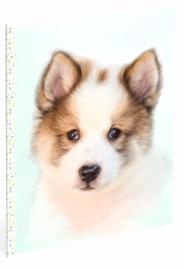 My favourite friends hond A4 schrift gelinieerd stip (3389)