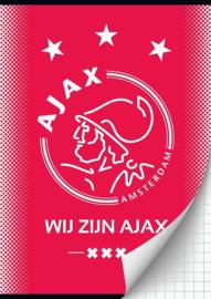 Wij zijn Ajax A4 schrift geruit (9043)