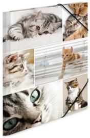 Katten elastomap A4