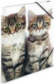 "Dieren elastomap A3 ""katten""(1437)"