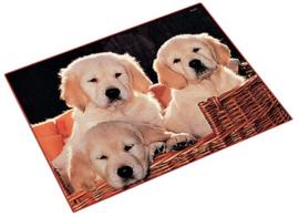 """Bureaulegger """"3 hondjes"""" (5810)"""