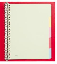 Budget tabbladen 5-delig karton