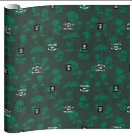 Franklin & Marshall boy's kaftpapier groen (6011)