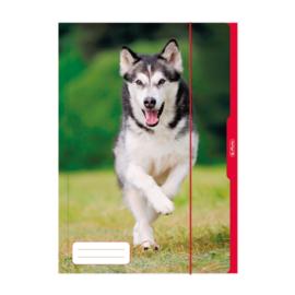 A3 opbergmap hond (8174)