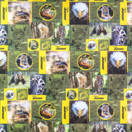 National Geographic kaftpapier (1065)