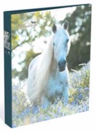 Amazone ringband 2r wit paard (3543)