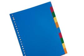 Kunststof tabbladen 10-delig (8679)