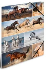 Paarden elastomap A3 (2170)