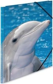 """Dieren elastomap A4 """"dolfijn"""" (1413)"""