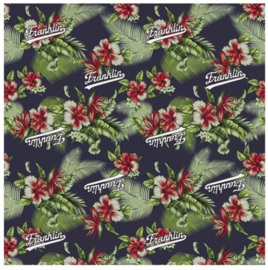 Franklin & Marshall boy's kaftpapier flowers (3161)