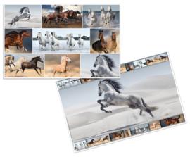 Bureaulegger paarden (3801)