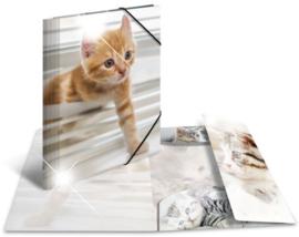 """Glossy elastomap A4 """"kitten"""" (3283)"""