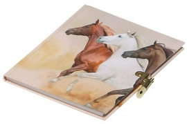 Paarden dagboek