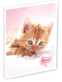 My favourite friends kat A4 schrift gelinieerd (4389)