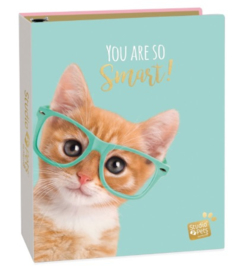 Studio Pets ringband kat 2r (0233)