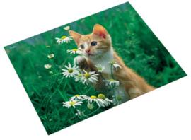 "Bureaulegger ""kat met bloemen"" (6367)"