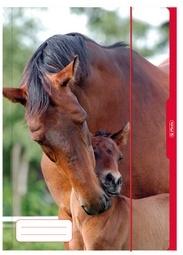 A3 opbergmap paard (8143)
