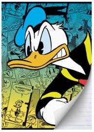Donald Duck A4 schrift gelinieerd groen/blauw (0425)