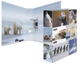 Ordner ijswereld (2045)