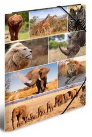 Wildlife elastomap A4 (2149)