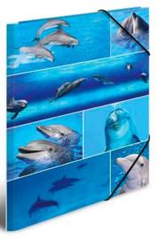 Dolfijnen elastomap A4 (2132)