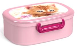 My favorite friends kat lunchbox (4600)