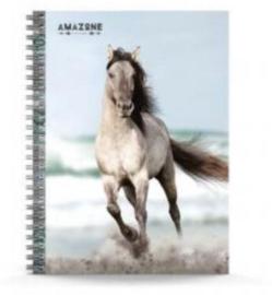 Amazone notitieboek A5 gelinieerd (6172)