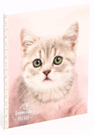 My favourite friends kat A5 schrift gelinieerd(0585)