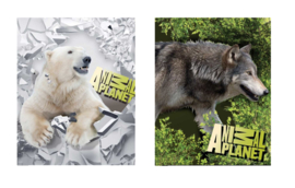 Animal Planet  A5 schriften set gelinieerd