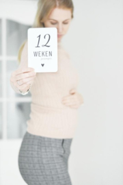 Invulboek Zwanger + Mijlpaalkaarten