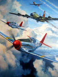 "Mustang P51C, Lee ""Buddy""Archer - Tuskegee Airmen"