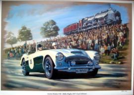 Austin Healey #38 - Mille Miglia 1957 (Last Edition)