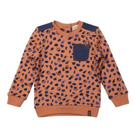 Boys Sweater Camel/navy - Koko Noko